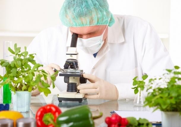 Пищевая лаборатория Химок провела свыше 3000 исследований
